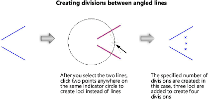 Create Dividing Lines